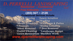 D.Perrelli Landscaping Business Card